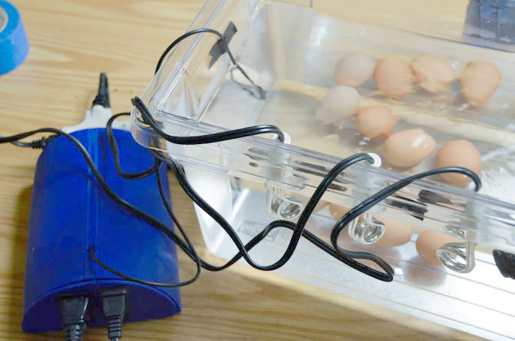 Sous-vide in action: cooking eggs.